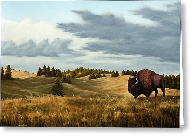 Bison  Wind Cave Park  South Dakota Greeting Card