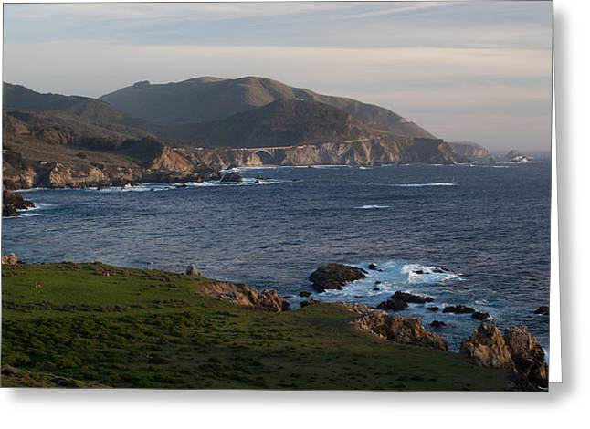 Bixby Bridge And Cows Greeting Card by Mike Reid