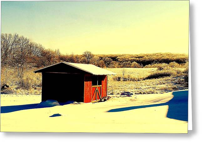 Black And Color Greeting Card by Frozen in Time Fine Art Photography