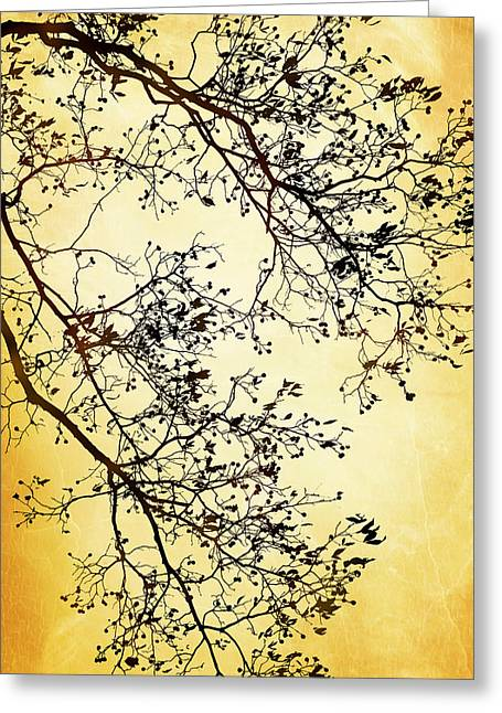 Black And Gold Tree Greeting Card