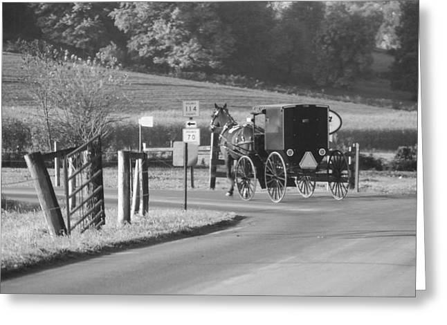 Black And White Amish Horse And Buggy Greeting Card by Dan Sproul