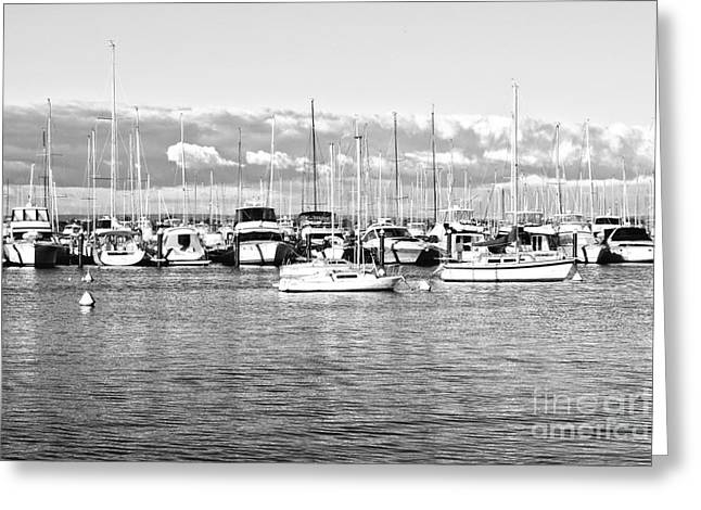Black And White Boats Greeting Card by Cassandra Buckley