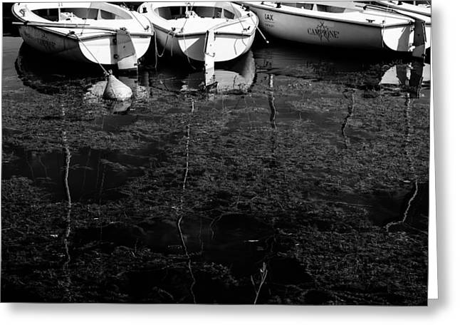 Black And White Boats Greeting Card