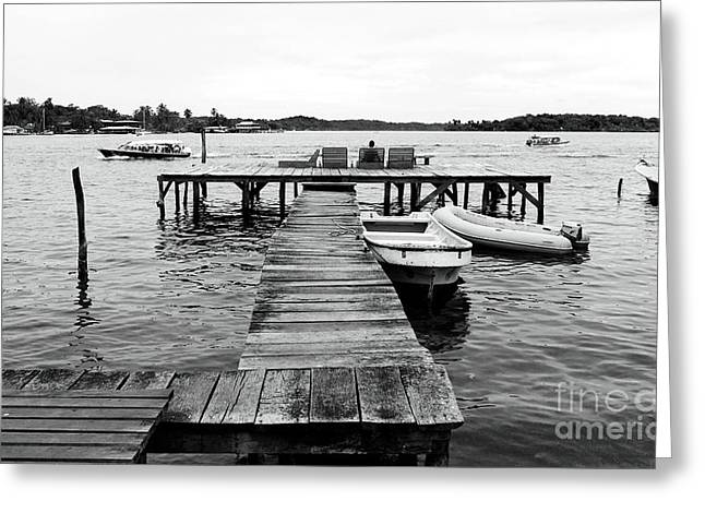 Black And White Dock Greeting Card by John Rizzuto