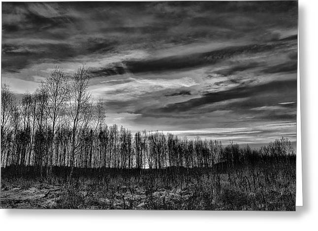 Black And White Grongarn Sky December 16 2014 Colouring The Clouds  Greeting Card by Leif Sohlman