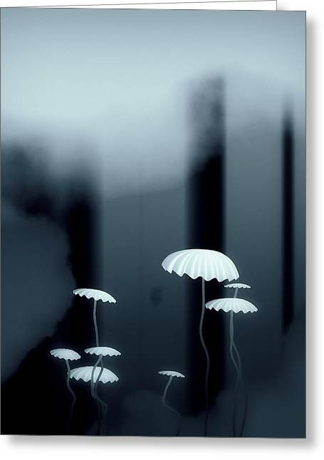 Black And White Mushrooms Greeting Card by GuoJun Pan