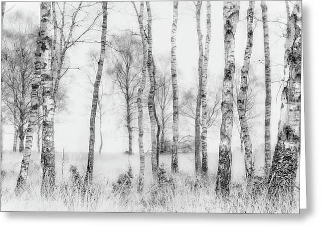 Black And White Greeting Card