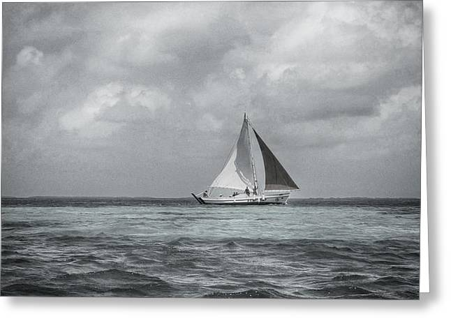 Black And White Sail Boat Greeting Card by Kristina Deane