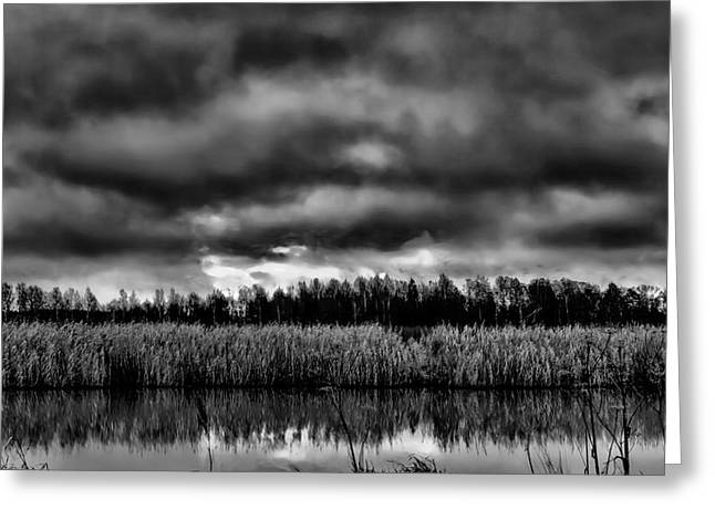 Black And White Sunrise Over Creek Greeting Card by Leif Sohlman