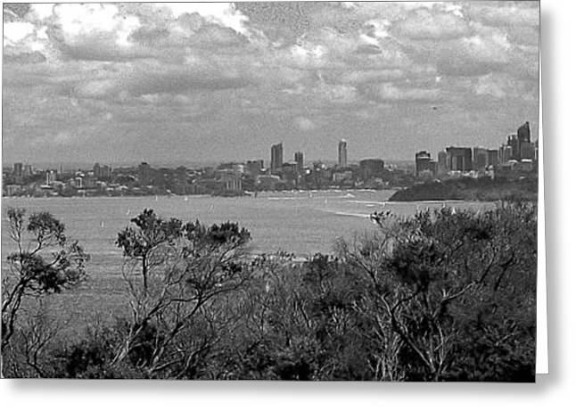 Greeting Card featuring the photograph Black And White Sydney by Miroslava Jurcik