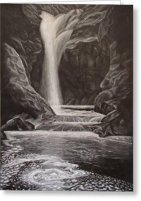 Black And White Waterfall Greeting Card by Svetlana Rudakovskaya