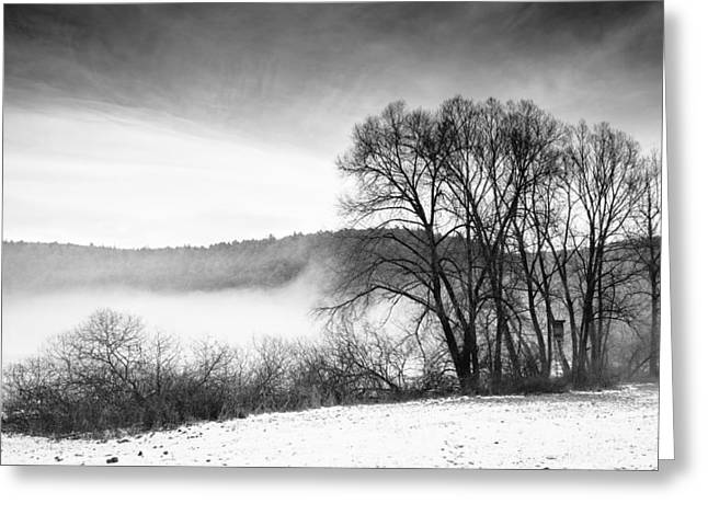 Black And White Winter Landscape With Trees Greeting Card by Matthias Hauser