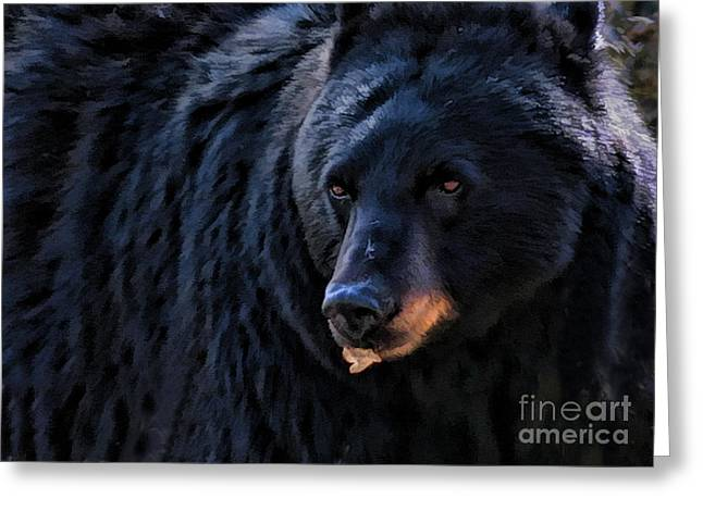 Black Bear Greeting Card by Clare VanderVeen