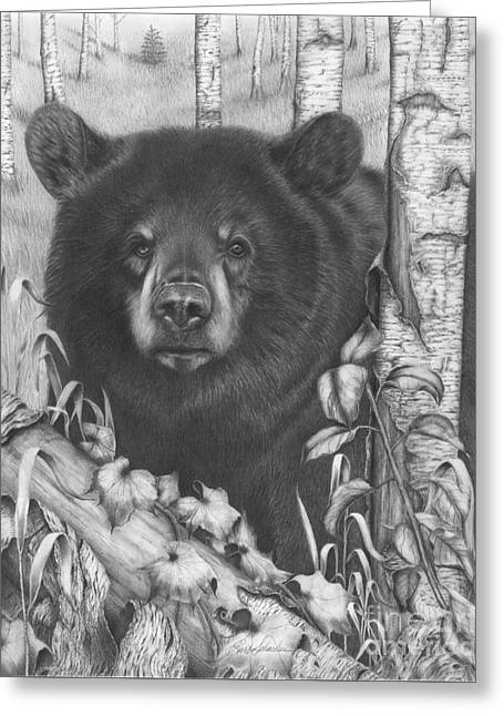 Black Bear On Newsome Creek Greeting Card