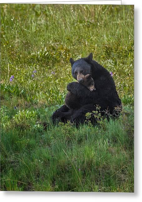 Black Bear Sow Hugging Cub Greeting Card