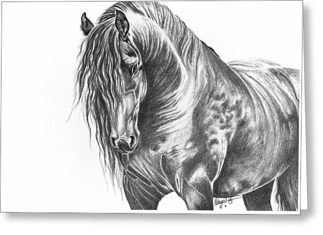 Black Beauty Greeting Card by Robyn Green