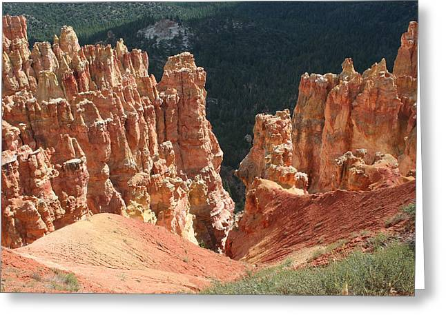 Black Birch Canyon Greeting Card by Mary Gaines