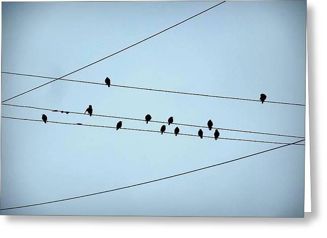 Black Birds Waiting In Blue Greeting Card