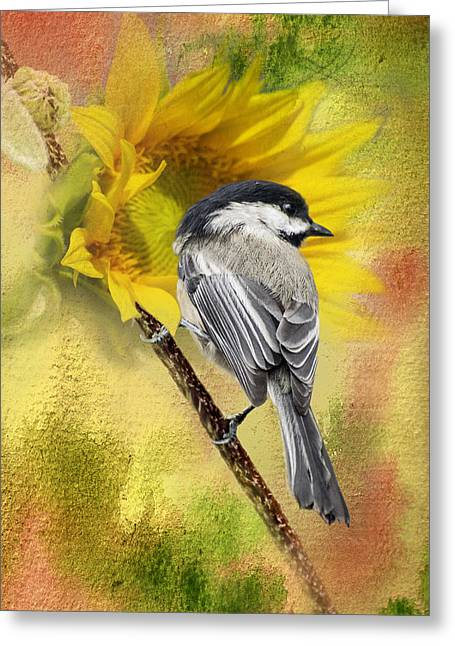 Black Capped Chickadee Checking Out The Sunflowers Greeting Card