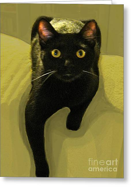 Black Cat Chartreuse Eyes Greeting Card by Maureen Tillman