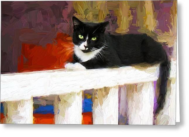 Black Cat In Color Series 2 Greeting Card