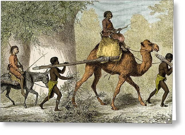 Black Children Led Into Slavery, 19th Greeting Card