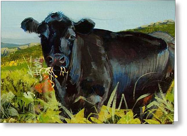 Black Cow Dartmoor Greeting Card