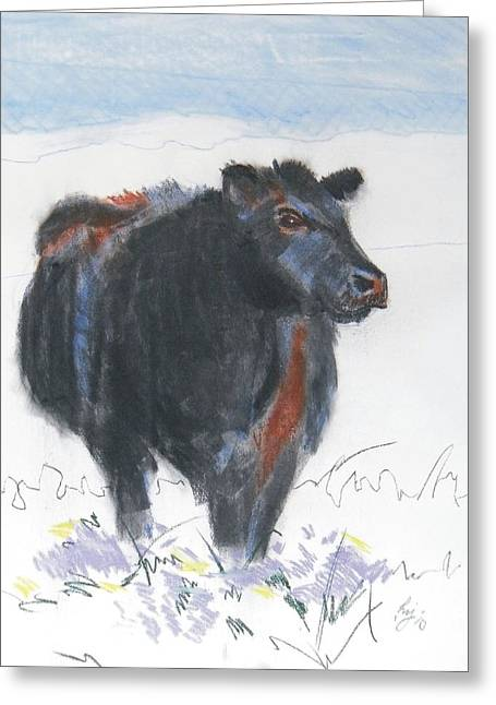 Black Cow Drawing Greeting Card