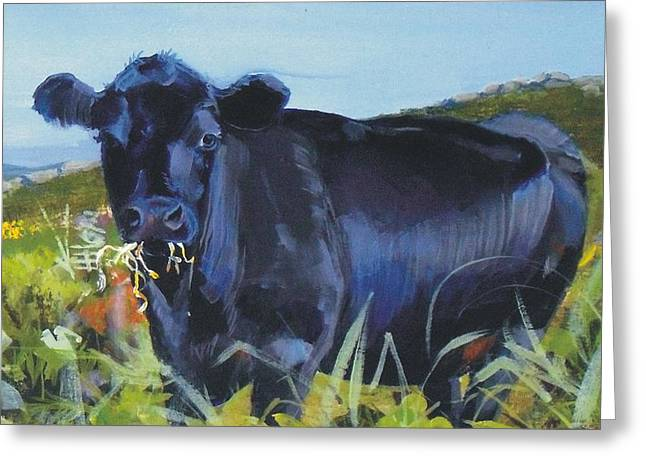 Cows Dartmoor Greeting Card