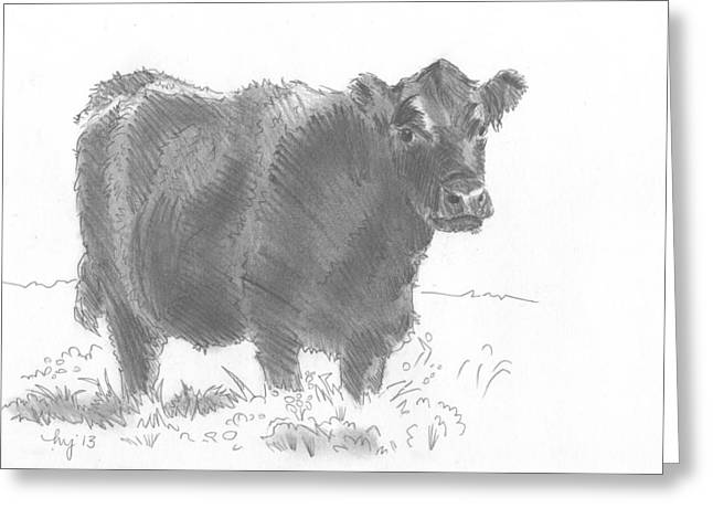 Black Cow Pencil Sketch Greeting Card