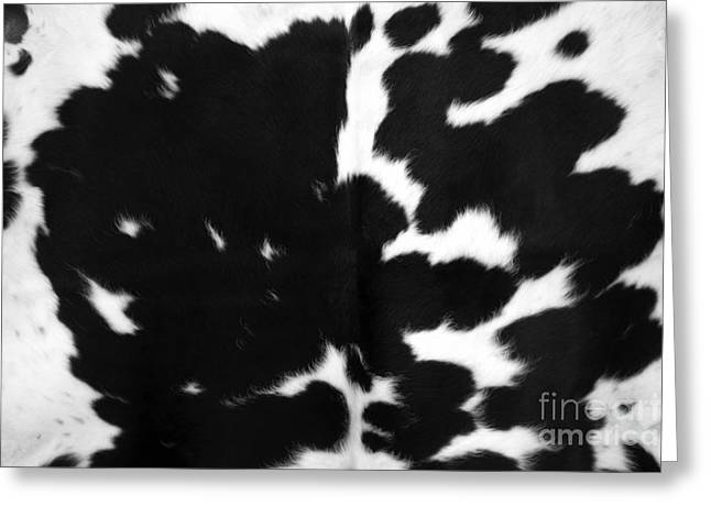 Greeting Card featuring the photograph Black Cowhide by Gunter Nezhoda