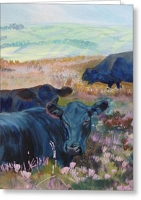 Black Cows On Dartmoor Greeting Card