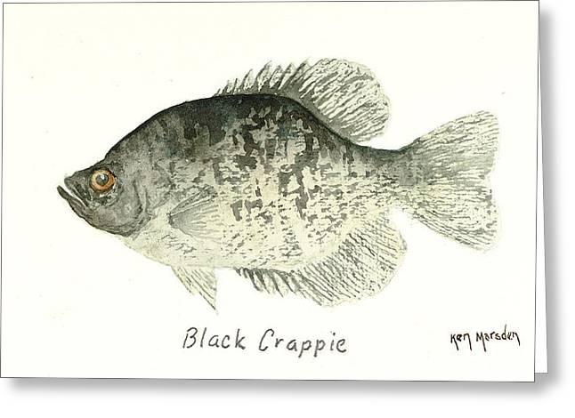 Black Crappie Greeting Card