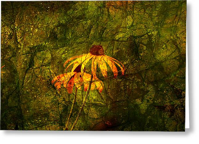 Black-eyed Susan Abstract Greeting Card by J Larry Walker