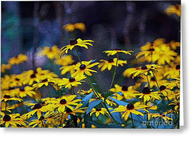 Greeting Card featuring the photograph Black-eyed Susans by Patricia Griffin Brett