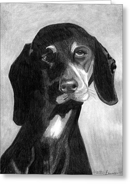 Black Forest Hound Dog Portrait  Greeting Card by Olde Time  Mercantile