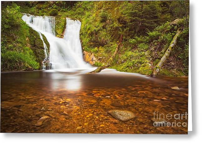 Greeting Card featuring the photograph Black Forrest Waterfall by Maciej Markiewicz