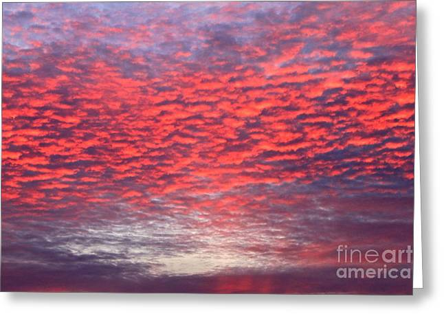 Black Friday Sunrise Greeting Card by Jay Nodianos