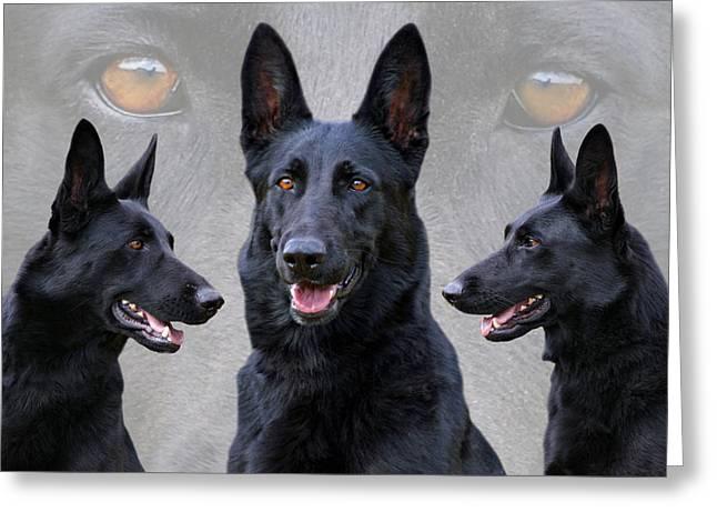 Black German Shepherd Dog Collage Greeting Card by Sandy Keeton