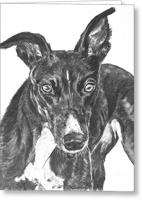 Black Greyhound Sketch Greeting Card