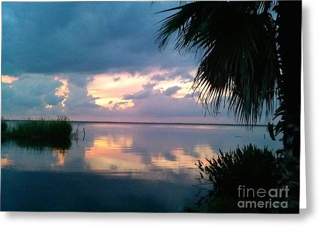 Black Hammock Sunset 3 Greeting Card