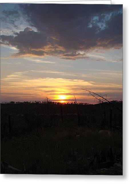 Greeting Card featuring the photograph Black Hills Sunset IIi by Cathy Anderson