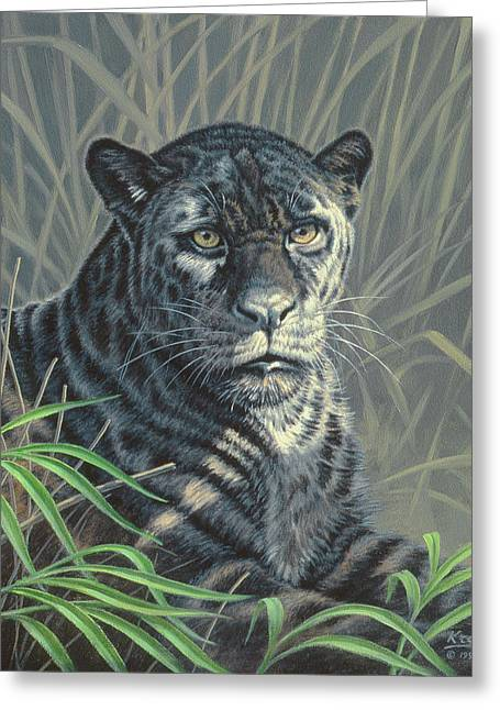 Black Jaguar Greeting Card by Paul Krapf