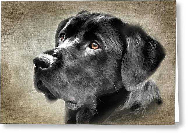 Black Lab Portrait Greeting Card by Eleanor Abramson