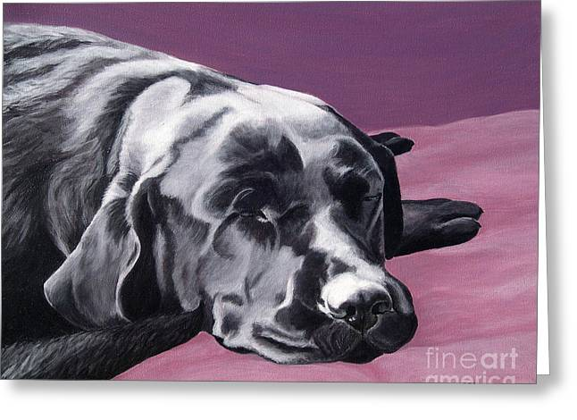 Black Labrador Beauty Sleep Greeting Card by Amy Reges