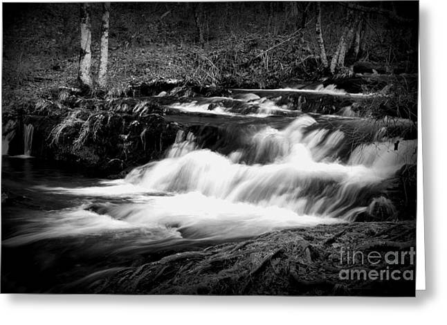 Black N White Cascades Greeting Card