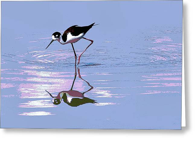 Greeting Card featuring the photograph Black Neck Stilt by Tom Janca