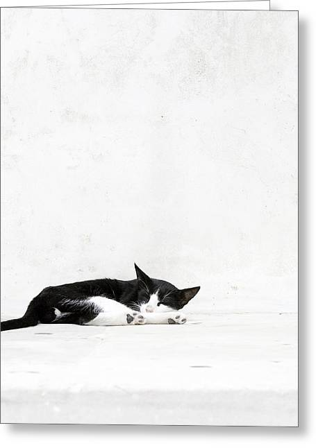 Greeting Card featuring the photograph Black On White by Lisa Parrish