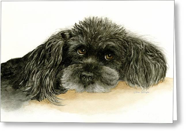 Black Poodle Dog Greeting Card
