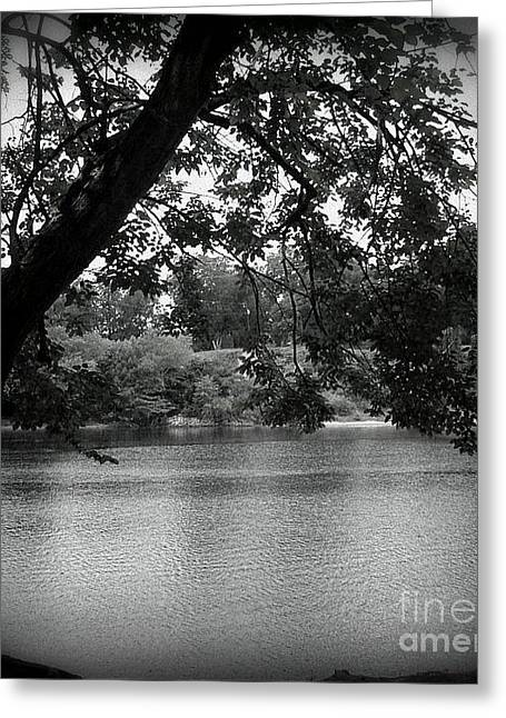 The Black River Greeting Card